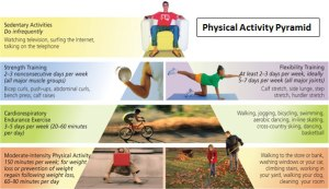 physica-activity-pyramid
