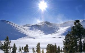 winter-sun-wallpapers_14464_1440x900